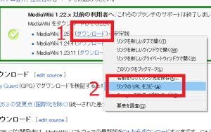 mwiki09